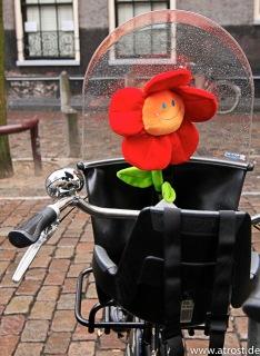 Web 2009 02 22 Niederlande Den Haag Amsterdam 24 mm 1 50 Sek bei f 4 5 12 0 24 0 mm 1